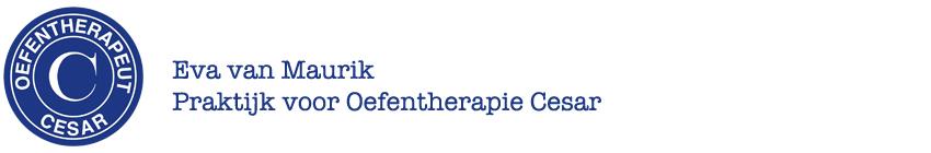 Oefentherapie Cesar Heerenveen